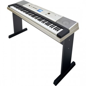 Yamaha YPG-535 Portable Keyboard