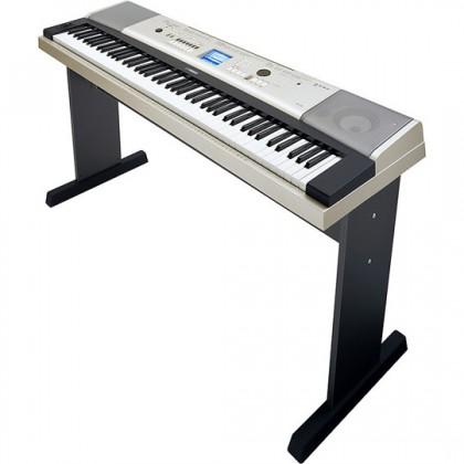 Yamaha YPG-535 Portable Keyboard